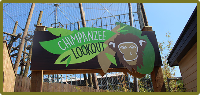 Chimpanzee lookout sign